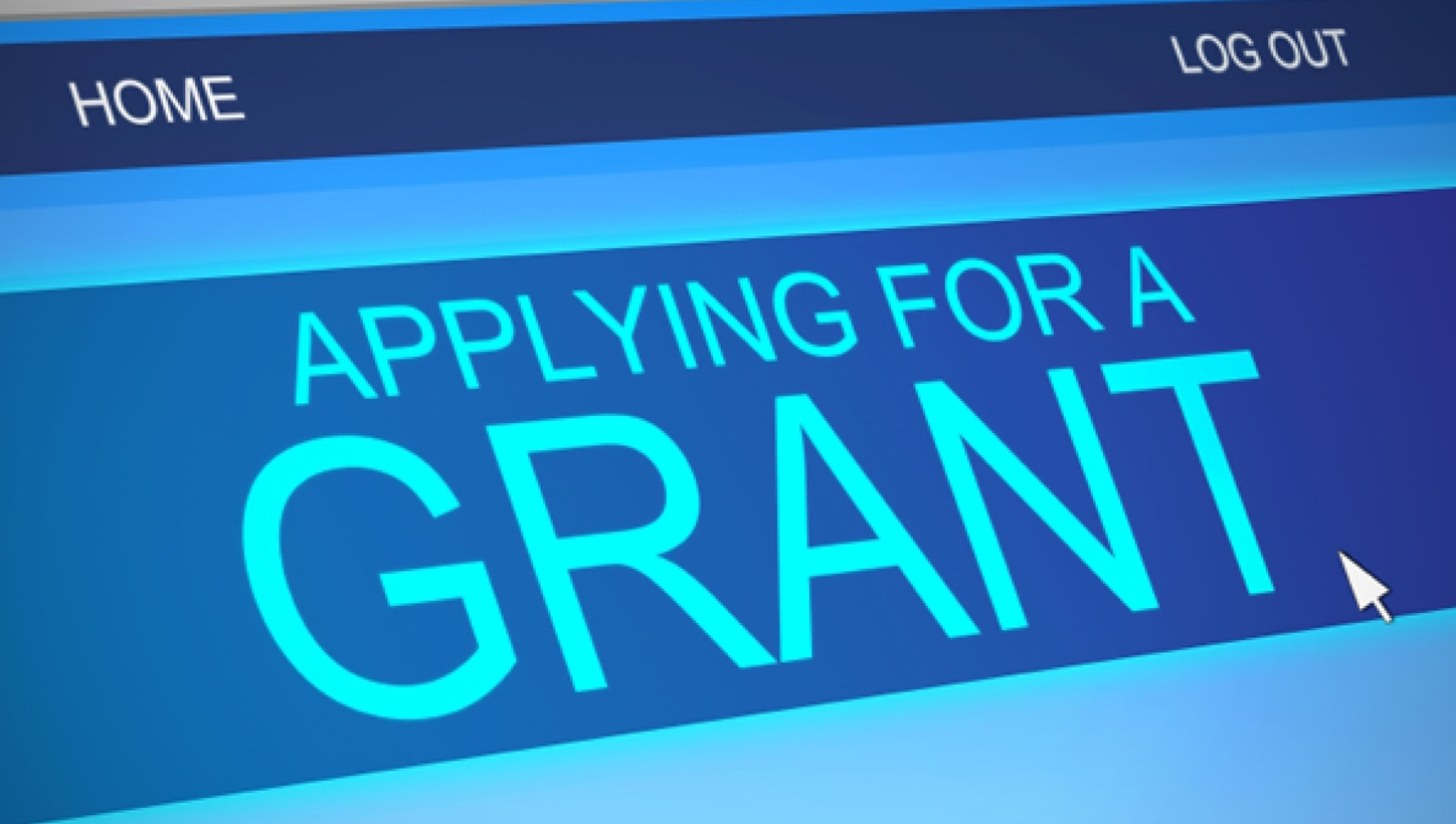 NIH or NIAID Grant Writing Service